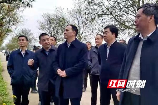 株洲市副市长顾峰到攸县调研春耕生产工作