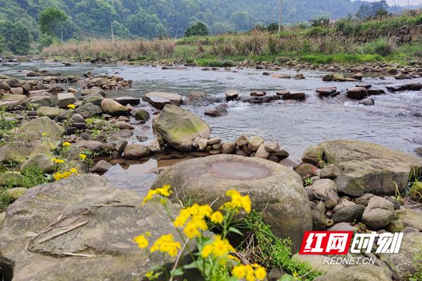 清澈的河水流淌在两河口村.jpg
