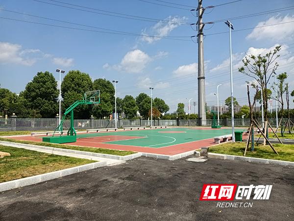 篮球场_wps图片.jpg