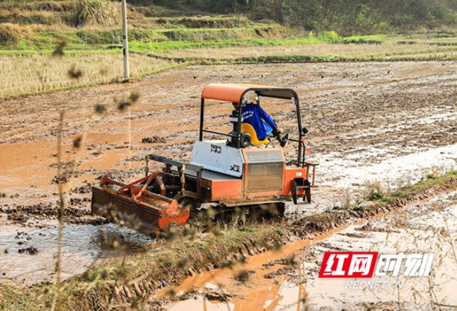 【图】衡阳市雁峰区:春耕备耕早 农业生产忙