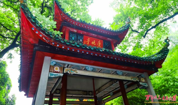 直播回顾丨2021年岳麓区红色文化旅游年暨文旅强区建设首发式
