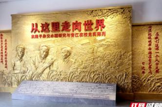 安江农校:愿天下人都有饱饭吃——杂交水稻发源地