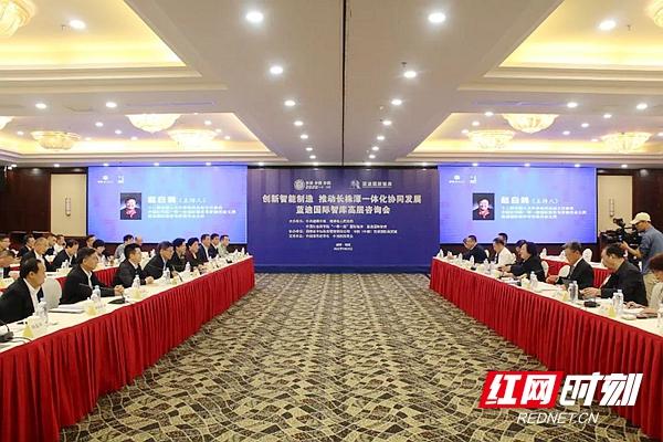 2020潭商大会 | 蓝迪国际智库高层咨询会召开 赵白鸽主持 曹炯芳致辞
