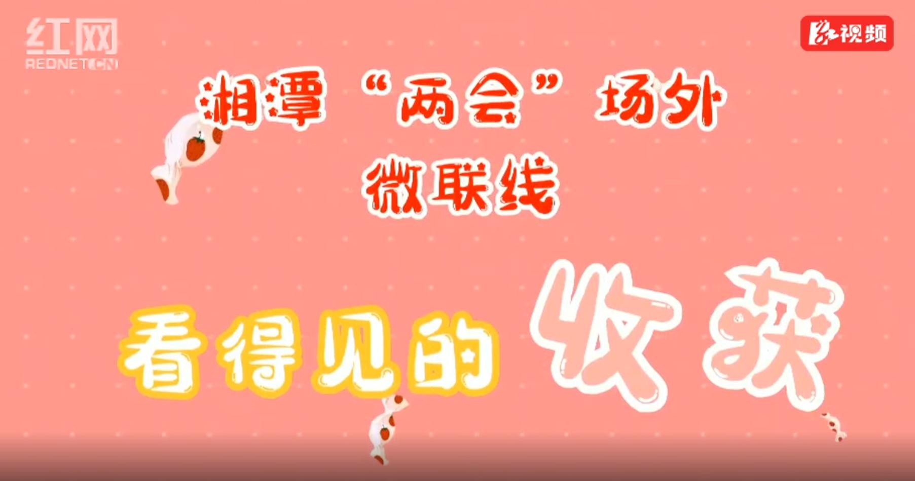 """湘潭""""两会""""场外微联线:看得见的收获(五)"""
