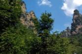 慈利县:新装备助力林业有害生物综合防治
