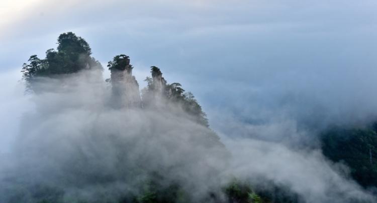 【视频+组图】张家界天子山云海云瀑齐现