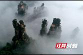 张家界武陵源:云海漫步峰林间(组图)
