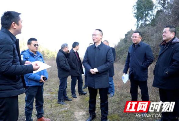 朱法栋调研东方希望集团生猪养殖项目建设情况