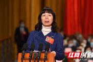 委员说丨段安娜:大力发展新兴消费 增强湖南经济发展新动能
