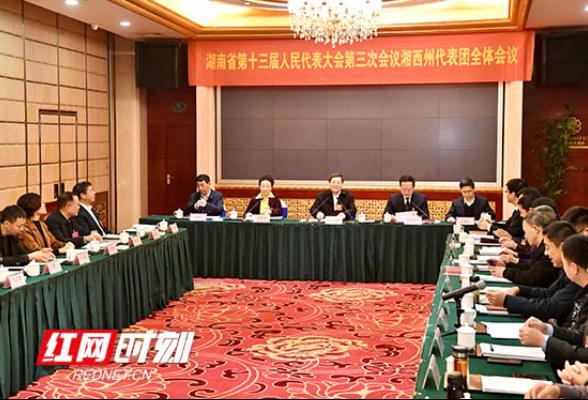 杜家毫参加湘西州代表团审查:奋力夺取脱贫攻坚最后胜利