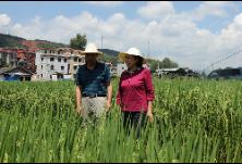 刘莲玉率队在郴州开展土壤污染防治法执法检查