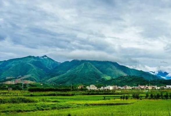 道县重点工程造林筑牢生态屏障 惠及贫困人口3万余人