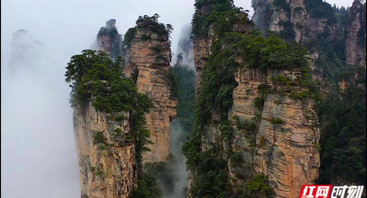 张家界:雨中黄石寨美景如画 景区多举措保障游客安全