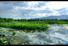 """张强、李晋娴:洞庭湖生态经济区""""十四五""""金融发展战略研究"""