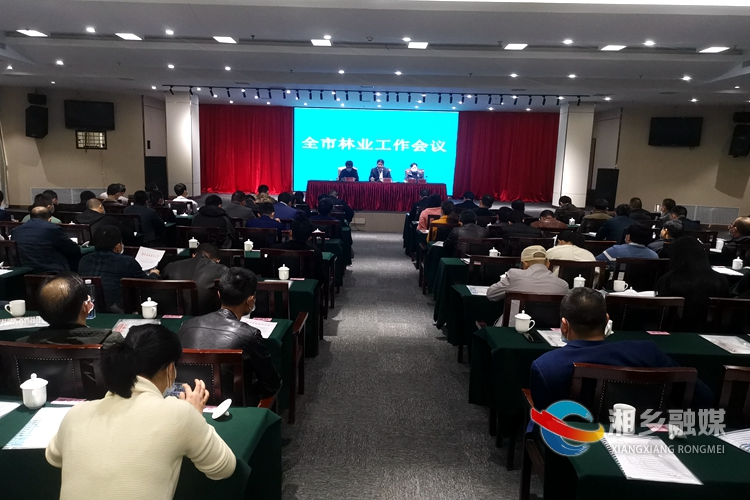 阔步2020 | 湘乡林业工作会议:用十年左右时间打造10亿油茶产业