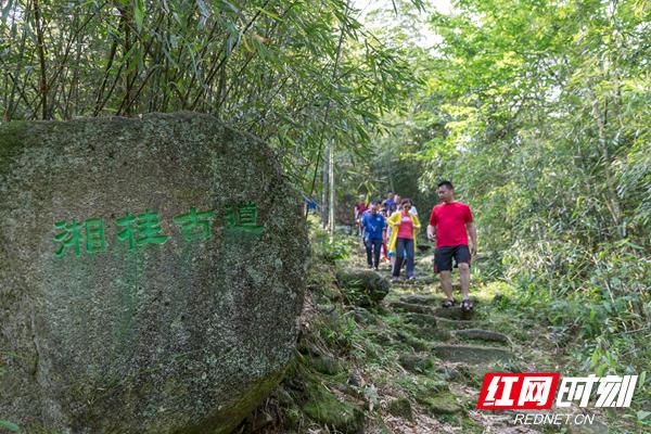 """7、学者、专家们行走在""""湘桂古道""""上进行考察.jpg"""