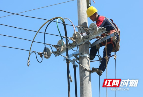婁底供電開展農網支線改造 10月(yue)再全線改造10千(qian)伏春(chun)煤線