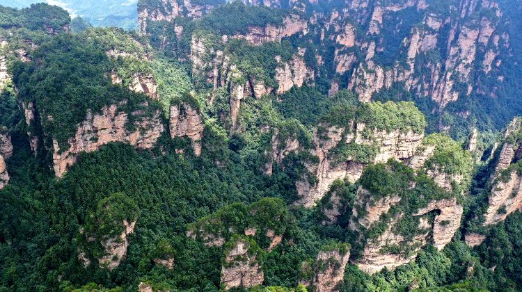 航拍世界自然遗产武陵源杨家界:峰林峰墙奇丽无比