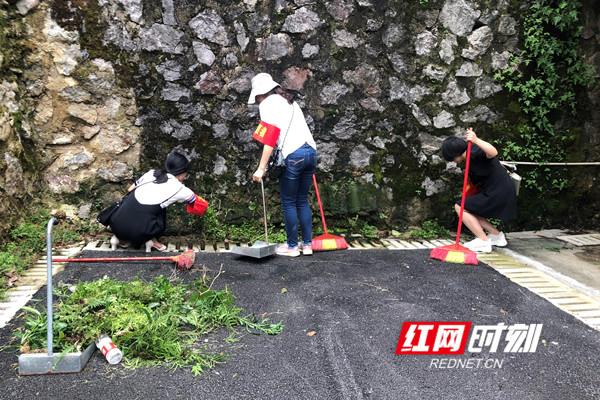 志愿者清理卫生死角的苔藓、杂草等_副本.jpg