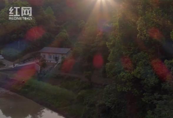 视频丨咱这一家子的春夏秋冬