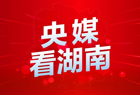 """新华网丨高山峡谷中的""""电骡子"""":猴子能上我们就能上"""