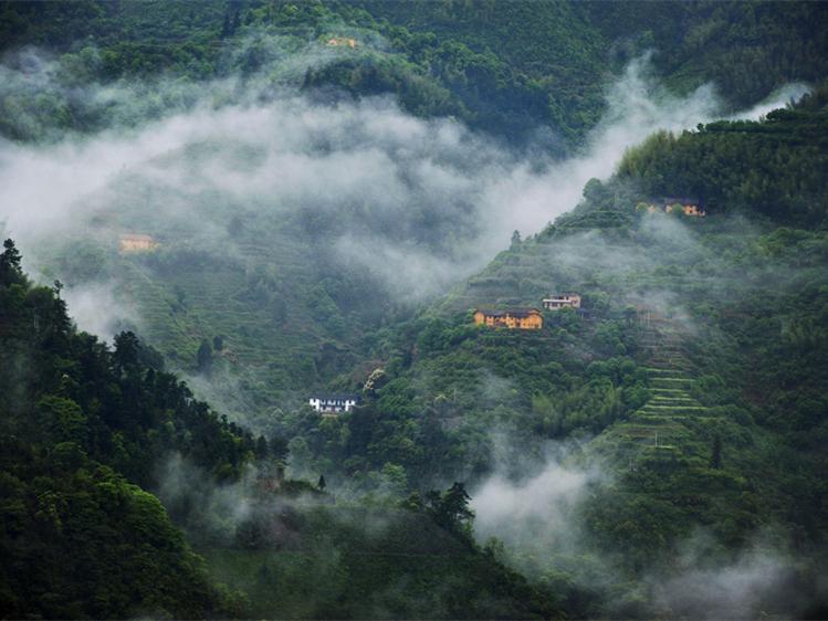一段三湘晚色,白云深處誰家。 沿山而棲的過山瑤,常備春茶蜂蜜,為有朋友遠方來。