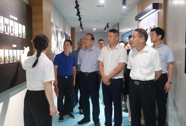 省人大常委会副主任杨维刚赴湘潭调研