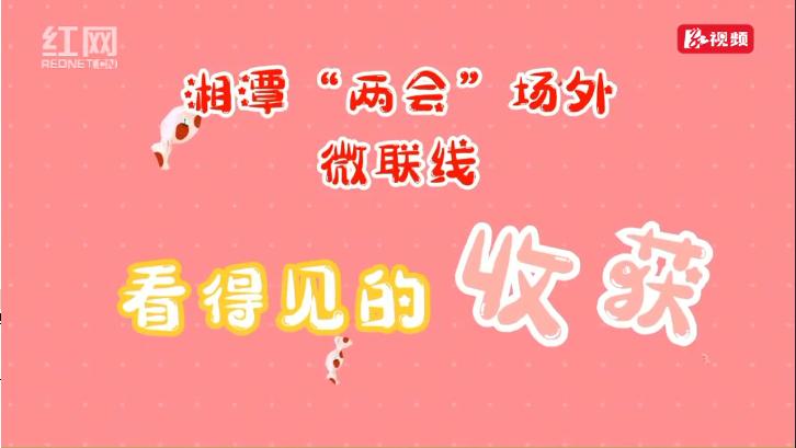 """湘潭""""两会""""场外微联线:看得见的收获(四)"""
