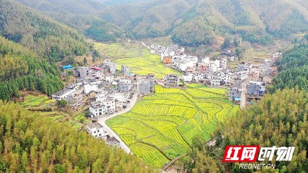 近年来,通过驻村帮扶单位的大力扶持,千马坪瑶族村生产生活条件大为改善,村容村貌焕然一新。