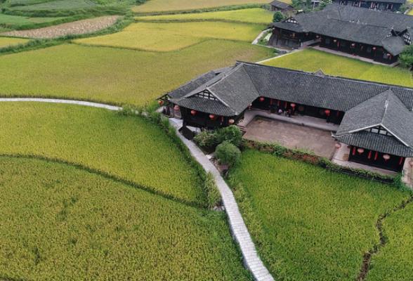 湖湘最美稻田 | 绿波春浪满屋前
