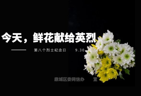 专题丨今天,鲜花献给英烈