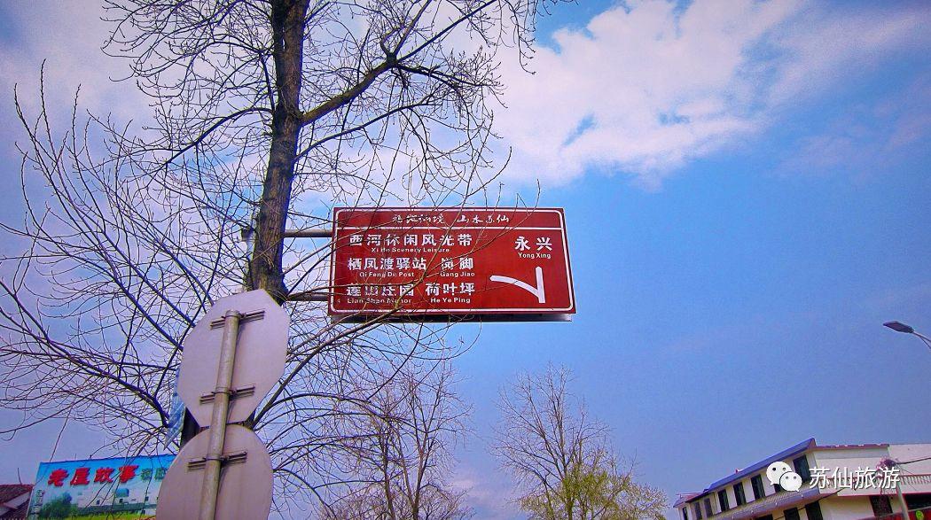 踏春好去处!苏仙区西河风光带风景美如画!