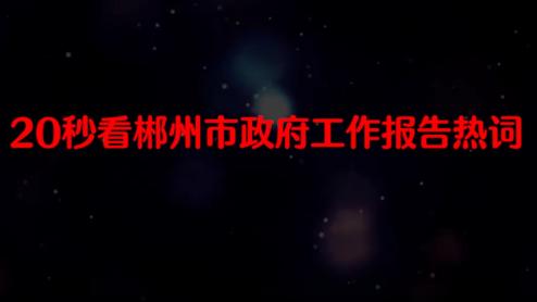 快闪 20秒看郴州市政府工作报告热词