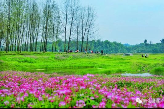 醉美三春景,人间四月天!新化县摄影协会带你赏不一样的春天