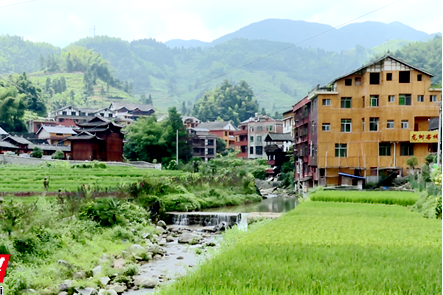 《记者探访脱贫路》  水车镇柳白村:发展产业 开发景点 打造村民致富新引擎