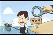 中华人民共和国渔业法