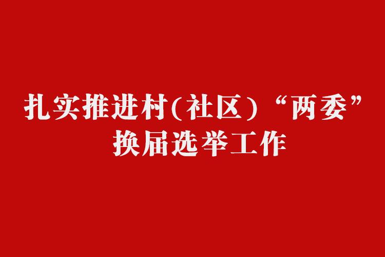 """专题   扎实推进村(社区)""""两委""""换届选举工作"""