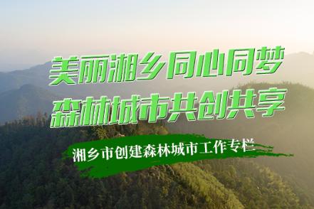专题 | 亚洲城娱乐手机登录入口创建森林城市工作