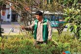 """高温""""烤""""验 园林工人为绿化苗木""""解渴"""""""