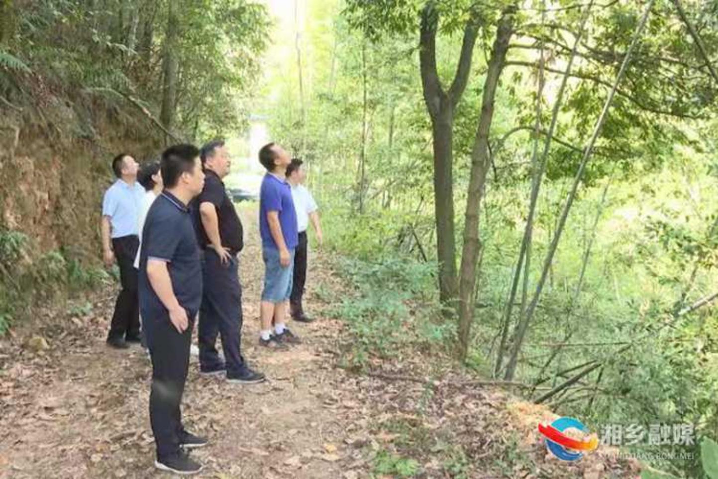 郭勇:压紧压实森林防火责任 牢牢守住生态安全底线