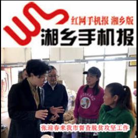 11月13日湘乡手机报