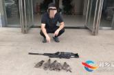气枪打斑鸠7只!五名男子非法狩猎被刑拘