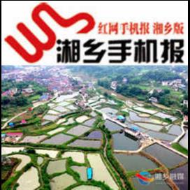 6月1日湘乡手机报
