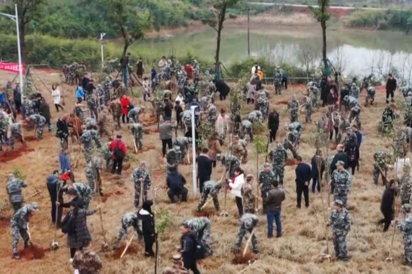 """短视频 湘乡150余名入伍新兵种下""""许愿树"""""""