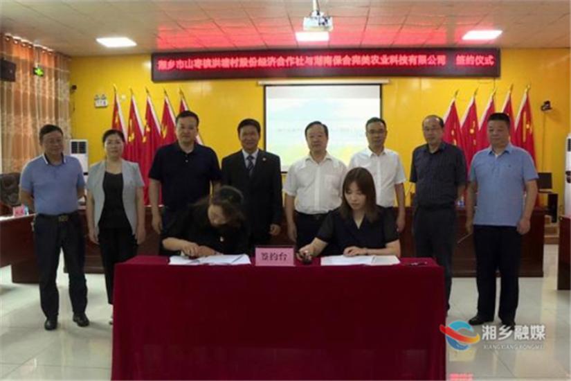 打造现代特色农业示范区!湖南保合完美农业科技有限公司与洪塘村签订合作协议