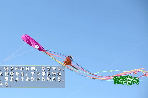 短视频   放飞风筝,感受春天!