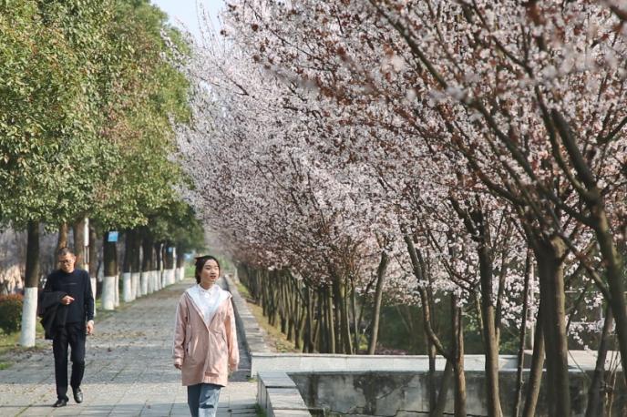 2月24日湘乡新闻