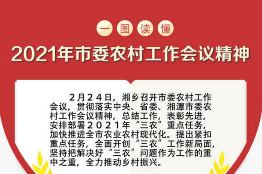 图解 2021年湘乡农村工作重点看这里