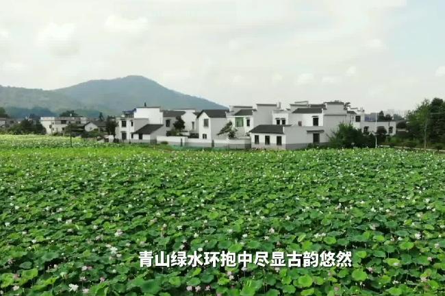 """2021湘乡""""两会""""特别策划:打卡湘乡Vlog • 乡村美景如画"""