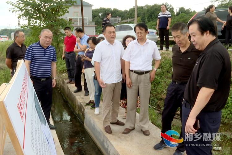 农业农村部来湘乡调研高标准农田建设